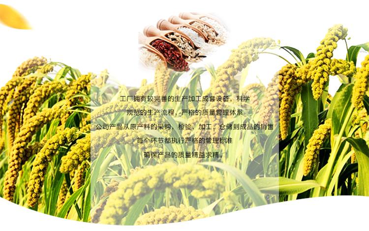 北纯 东北五谷杂粮 精制黄豆1kg 真空包装