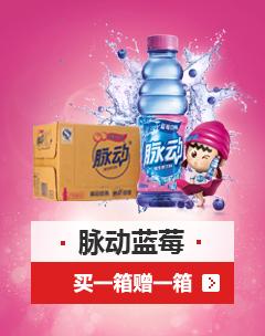 京东脉动维生素饮料蓝莓口味大促  买1箱送1箱