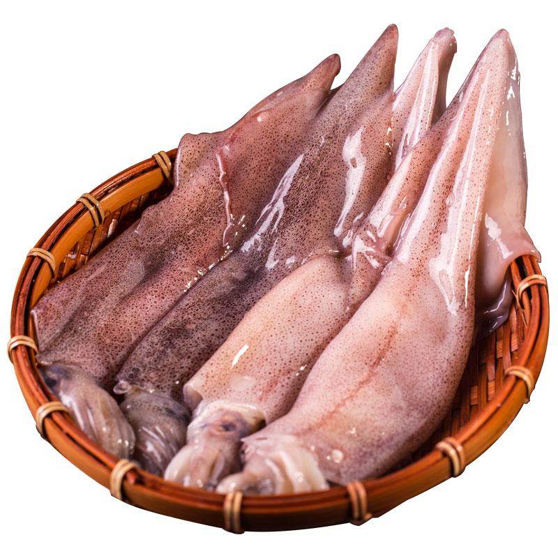 獐子岛 冷冻鱿鱼 500g 4-5条 袋装 海鲜水产