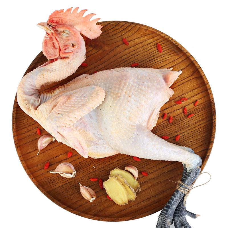 扶贫跑步鸡 太行柴鸡公鸡 1.25kg/盒 整鸡 林间散养土鸡