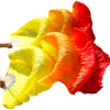 1 пара натуральных шелковых поклонников женский танец живота танец шелка вентиляторы желтый + оранжевый + красный танец живота уроки саломеи сd с видеокурсом
