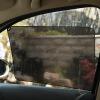 Лучший Белл (Gabree) автомобильный бампер автомобиля Зонт с черным изолирующей стороны пленки солнца электростатических средств