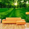 Пользовательские 3D обои для рабочего стола Mural Green Forest Солнечный свет Гостиная Диван ТВ Фон Нетканые обои для стен Обои Modern