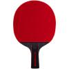 Agnite ракетка для настольного тенниса ракетка для настольного тенниса torres sport 1 tt0005