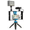 PULUZ Video Rig + LED Studio Light + Video Shotgun Microphone + мини-штативы для штатива с головкой штатива с холодным штативом дл