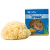 Pierides Natural Sponge Греческий Импортированный Средиземноморский Купальники Булочки Baby Bunny Ванна Ванна Уход за лицом Очищаю