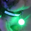 mymei горячей очаровательно собаку под мигающий кпп щенка воротник безопасности ночной свет кулон зеленый mymei горячей очаровательно собаку под мигающий кпп щенка воротник безопасности ночной свет кулон белый