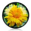 Фото Погода хорошая 77-мм зеркало крупным планом Крупный план +10 10-кратный макросъемка макросъемки ближе к объективу Canon 24-70 24-105 / Nikon 24-120 SLR тарифный план