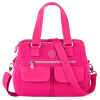 Fitipu findpop холст женская сумка сумка женская дикая сумка леди дракона 10 розовый