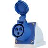 同为(TOWE)IPS-S316S工业连接器明装插座工业插头插座3芯2P+E母头 2010上海产业和信息化发展报告:工业及信息化协会