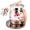 СКГ электрочайник медицины или горшок здоровья горшок 2L стеклянный чайник нагрева большой емкости из нержавеющей стали элемент 304 с фильтром 8070 купить горшок для пальмы большой