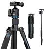 Benro (Benro) Штатив it25 Canon Nikon SLR камеры штатив легких путешествий SLR камера штатив голова профессиональная цифровая slr камера nikon d3300 18 55vrii
