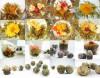 36 Типы Подарочные Цветущий чай * 36 бутонов * бесплатная доставка бесплатная доставка водные колонки