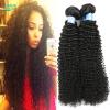 Лучший поставщик волос Maylasian Hair Curly Weave Человеческие волосы Малайзийский кудрявый кудрявый Virgin Hair Jet Black 100g Haar Kinky Culry Hair other 100% ms 100g queen 01010