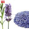 50g Lavender dried flower tea yangxinanshen sleeping the health care Chinese herbal gift flower tea herb bag good to sleep chinese antihypertensive ginkgo biloba leaf tea china yinxing organic green health personal care lower blood pressure herb tea