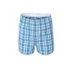 Classic Plaid Men Boxer Shorts Mens Underwear Cotton boxers for male Woven 550202 550203 550204