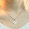 JPF 925 серебряных ювелирных изделий цепи цветок ожерелье женский короткий параграф ключицы Корейский моды небольшой свежий 4077