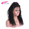 Carina Brazilian Virgin Hair Kinky Curly Full Lace Human Hair Wigs With Natural Hairline For Black Women Free Part 7a u part wigs brazilian virgin hair