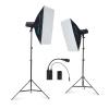 Golden Eagle Le TX250W двойной светильник костюм фотографический свет студия свет вспышка студия фотография свет мягкий свет коробка костюм продукт документация фотоаппарат оборудование фотографическое оборудование