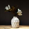 Лин И вазы просты модные ваза украшения вазы pavone ваза камелия