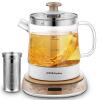 Rongshida (Royalstar) горшок здоровья стеклянный чайник чайник кипятили чайник многофункциональный YSH12Q 1.2L