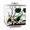 Одд квадрат Переполнение ведро естественно небольшой аквариум аквариум аквариум аквариум мини ведерко цилиндр акрилового аквариума аквариум аквариум экология квадратный черный цилиндр с подсветкой небольшой аквариум на стену питер