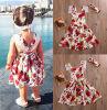 CANIS @ Toddler Kids Girls Кружевное платье из цветов Summer Dressress Party Dresses