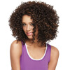 Dalin Curly Wig Heat Resistant Fiber Synthetic Wigs Two Tone Brown and #27 100% Heat Resistant Fiber Kinky Curly Free Style 300g 1 kinky curly synthetic wig 14 short wigs free shipping black wig heat resistant kinky curly synthetic wig jack frost peluca anna
