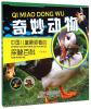 中国儿童最爱看的探秘百科:奇妙动物 儿童探索百科:奇妙的人体