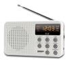 Sony Ericsson F2 Card Mini Digital Radio Card Динамик Портативный аудио MP3-плеер TF Белый mf2300 f2
