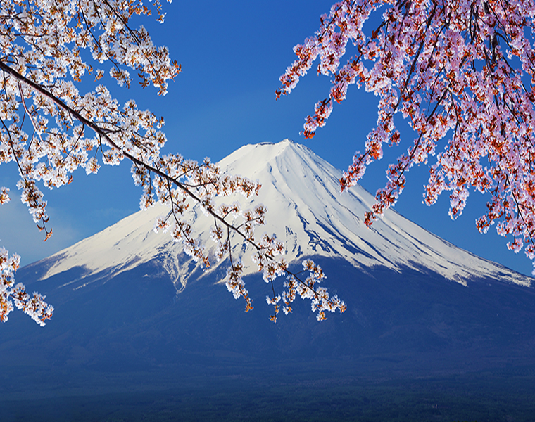 Colomac Смешанный цвет Fuji снег обои