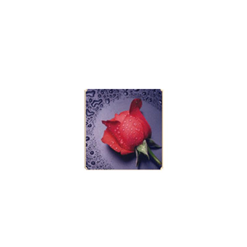 HelloYoung Красный цвет алмазная вышивка леди роза 30x40см