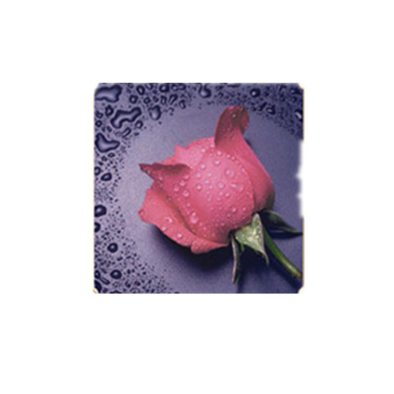 HelloYoung Розовый цвет алмазная вышивка леди роза 30x40см