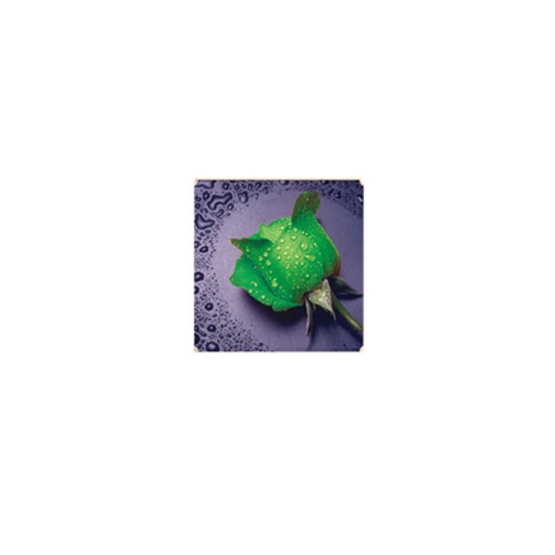 HelloYoung Зеленый алмазная вышивка леди роза 30x40см