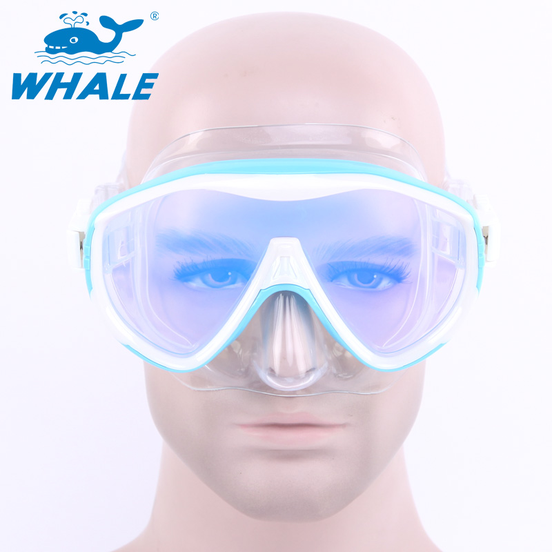 BENICE синее небо newest full dry diving mask snorkeling mask silicone scuba mask mascara buceo full face alien style whole dry mask for adult