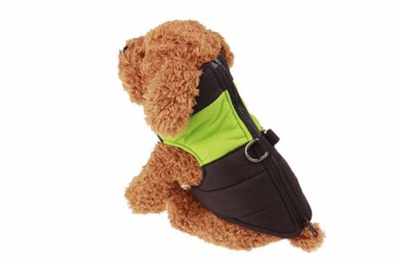 kangfeng Зелёный цвет S платье для собак dezzie рейси