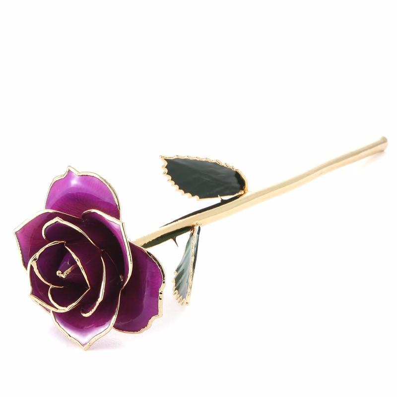 Daya Rose Пурпурный