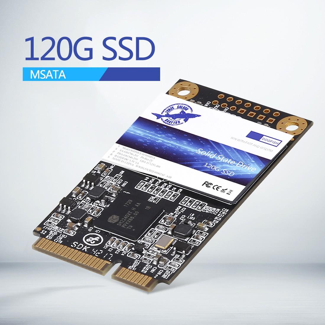 DOGFISH  120GB