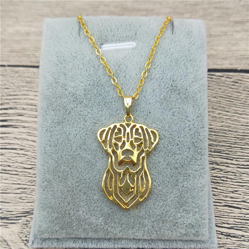 Ожерелье женщин ожерелья способа ожерелья способа ожерелье e l f i n Gold унисекс фото