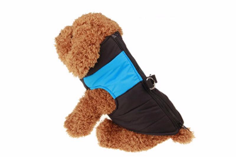 kangfeng Синий цвет XL платье для собак dezzie рейси
