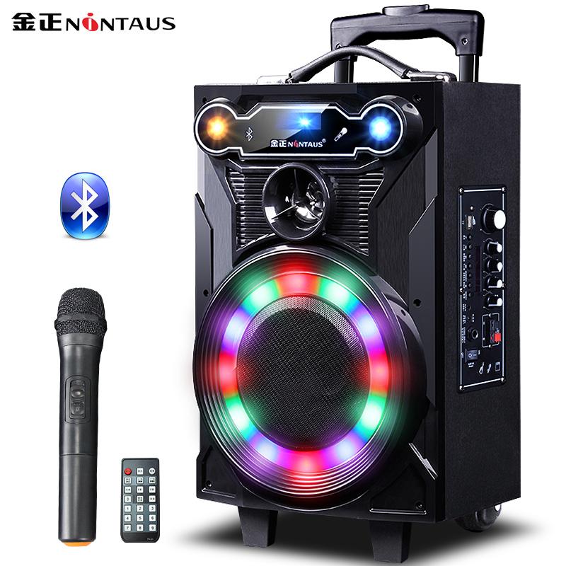 JD Коллекция N23-8-дюймовый микрофон дефолт soaiy saaiy sa t18 портативный мобильный стержень для наружного аудио высокой мощности с квадратным танцем с беспроводным микрофонным усилителем