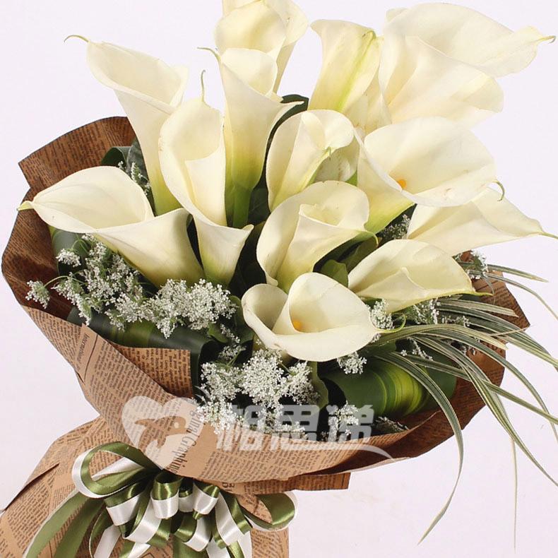 马蹄莲 鲜花 花束
