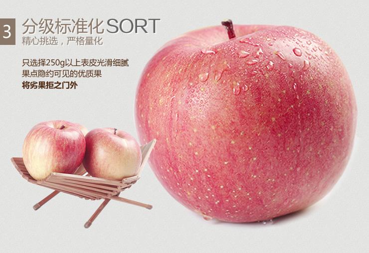 来品新疆阿克苏糖心苹果2kg/箱