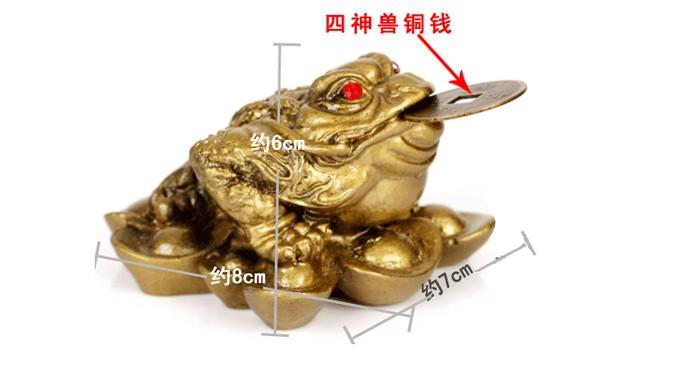金蟾蛙怎么分公母图解 金蟾蛙分公母图片大全 金蟾蛙卵图片 鸽子怎么图片