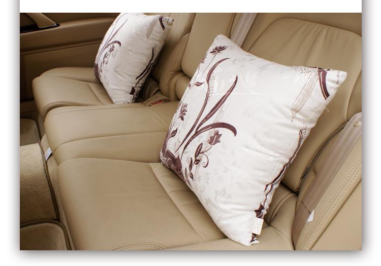全棉汽车抱枕靠枕 车用头枕颈