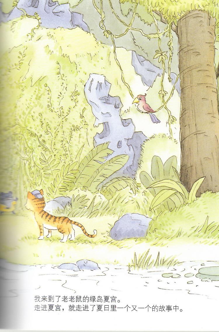 笑猫日记��d#��'_笑猫日记 想变成人的猴子 杨红樱著 明天出版社