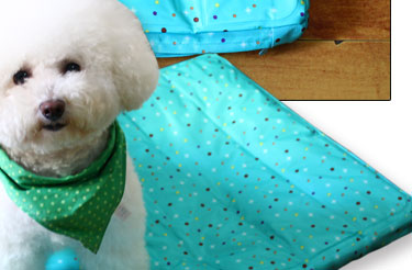 泰迪床垫窝凉垫比熊小型犬狗垫狗笼垫凉冰垫狗狗垫子 清凉薄荷绿 s号