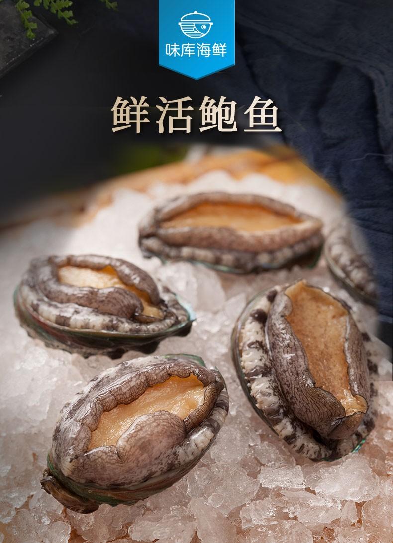 味库海鲜鲜活鲍鱼-推好价 | 品质生活 精选好价