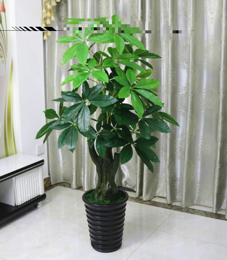 植物大战僵尸烈焰植物包_cae仿真与数学仿真_仿真植物