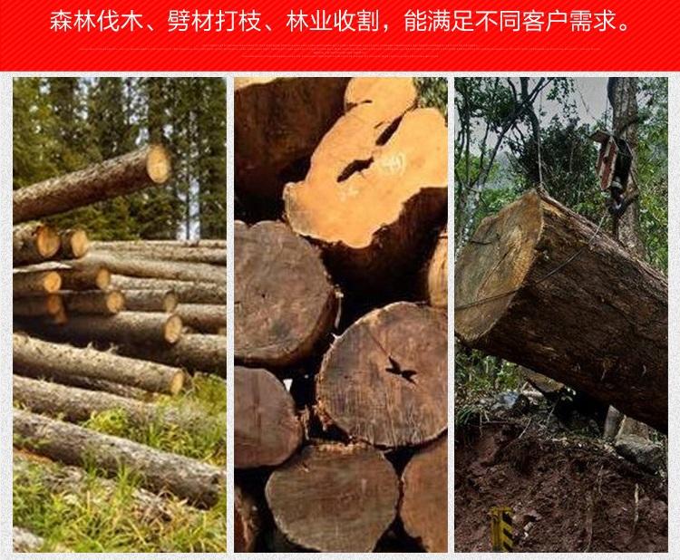 汽油锯伐木锯山林伐锯大功率油锯58气缸园林锯 油锯含图片